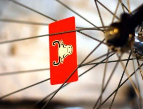 Evanston Welcomes Bucephalus Bikes – New Sales & Repair Shop Brings Options to Cycling Community